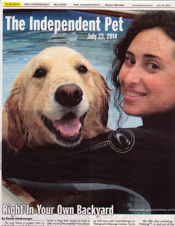 S.S. Aqua Dog in The Independent